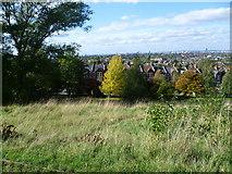 TQ3473 : View from Dawson's Hill by Marathon