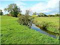 SO8624 : River Chelt near Inchmore Bridge by Jonathan Billinger