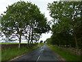 NZ1538 : Wolsingham Road by Alexander P Kapp