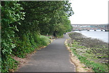 NT9953 : Footpath by the River Tweed by N Chadwick