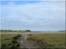 SD3642 : Wyre Estuary from Pegs Pool Tidal Door by Chris Heaton