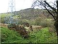 NZ0657 : Pylon next to Footpath near Kipperlyn by Clive Nicholson