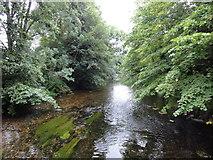TR1558 : Canterbury, Riverside Walk by Helmut Zozmann