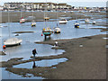 SX9372 : Gathering mussels, low tide, Shaldon  by Robin Stott