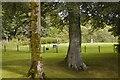 NJ5340 : Glimpsed golfers... by Bill Harrison