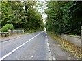 N7366 : Looking east on the N51 by James Allan