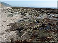 SX3153 : Rocks at Downderry by Derek Harper