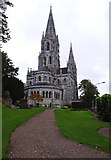 W6671 : St. Fin Barre's Cathedral - east end, Cork by P L Chadwick