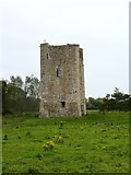 N7049 : Donore Castle by James Allan