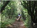 TQ4062 : Bridleway to Furze Bottom by David Anstiss