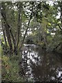 SO2980 : River Clun west of the bridge by Penny Mayes