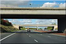 SE4340 : A1(M) - junction 44 bridges by Robin Webster