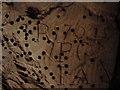 TF0615 : 250 year Old Graffiti by Ian Paterson