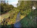 SD9404 : River Medlock, Leesbrook by David Dixon