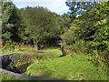 SD9404 : Leesbrook Nature Park by David Dixon
