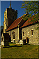 TL3627 : Church of St Mary, Westmill, Hertfordshire by Julian Osley