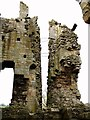 NU1109 : Edlingham Castle - what keeps it up by Andrew Curtis