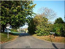 SZ5392 : Brocks Copse Road, Wootton by Ian S