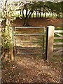 TM3172 : Footpath Gate of the footpath to St.Peter's Church, Ubbeston & Barell's Hill by Adrian Cable