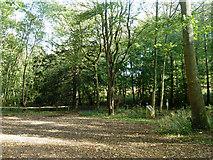 TQ0950 : Car park off Green Dene by Robin Webster