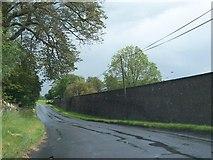 N5676 : Public road running alongside the demesne wall of Loughcrew by Eric Jones