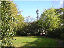 TQ2882 : Telecom Tower from within Park Crescent gardens by Christopher Hilton