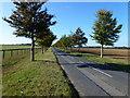 TL6567 : Chippenham Road heading to Snailwell near Newmarket by Richard Humphrey