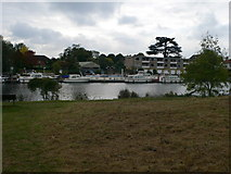 TQ1667 : Boats moored at Thames Ditton by Eirian Evans