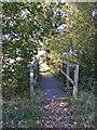 TM3374 : Footbridge of the footpath to Bridge Street, Huntingfield by Adrian Cable