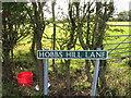 SJ6882 : Hobbs Hill Lane, southwest of High Legh by Alex McGregor