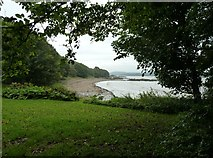 NX6548 : Nun Mill Bay by Ann Cook