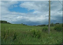 N6077 : Grazing land west of Patrickstown by Eric Jones