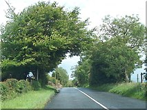 N6077 : The R154 north-west of Patrickstown by Eric Jones