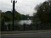 TQ0866 : A loop of the Thames by Eirian Evans