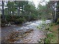 NH9207 : Am Beanaidh upstream of the Cairngorm Club Footbridge by Phil Champion