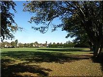 TQ3355 : Queen's Park, Caterham by Derek Harper