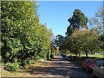 TQ3355 : Queen's Park Road, Caterham by Derek Harper