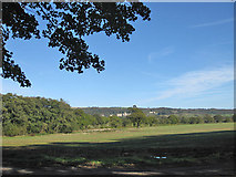 SE5976 : View to Ampleforth Abbey by Pauline E