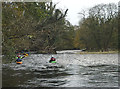 SD5187 : Canoeists on the River Kent by Karl and Ali