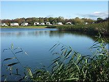 NT6578 : Rural East Lothian : Seafield Pond, Belhaven by Richard West