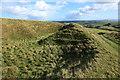 SY5786 : Former limestone quarry, Abbotsbury by Rob Noble