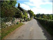 SX8856 : Orange Way in Devon and Torbay (17) by Shazz