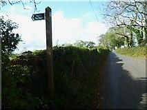 SX8856 : Orange Way in Devon and Torbay (18) by Shazz
