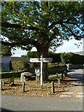 SX8756 : Orange Way in Devon and Torbay (22) by Shazz