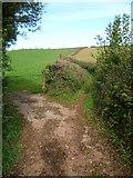 SX8563 : Orange Way in Devon and Torbay (71) by Shazz