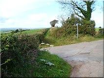 SX8564 : Orange Way in Devon and Torbay (76) by Shazz