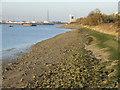 TQ4480 : Low tide at Thamesmead by Malc McDonald