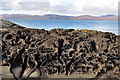 NR7287 : Volcanic rock formations on Eilean Traigh by Howard Cleveland