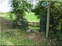 SX8367 : Orange Way in Devon and Torbay (87) by Shazz