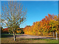 SU6979 : Maple Hedge, Sonning Common by Des Blenkinsopp